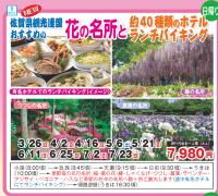 佐賀県観光連盟 おすすめの 花の名所とランチバイキング