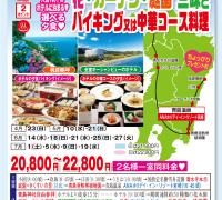 宮崎コース 花 ・ガーデン ・庭園 三昧とバイキング又は中華コース料理