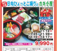 宮崎牛&海鮮丼&海鮮焼&日向ひょっとこ踊り