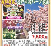 冬の花鑑賞と海鮮昼食と唐戸市場