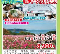 能古島アイランドパークとヤフオクドーム