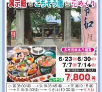 大宰府坂本八幡宮&展示館とごちそう膳と花めぐり