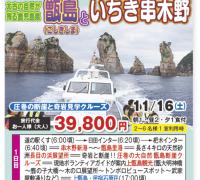 甑島(こしきしま)といちき串木野